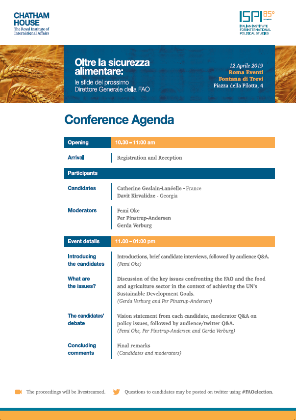 Beyond food security: the challenges for the next FAO